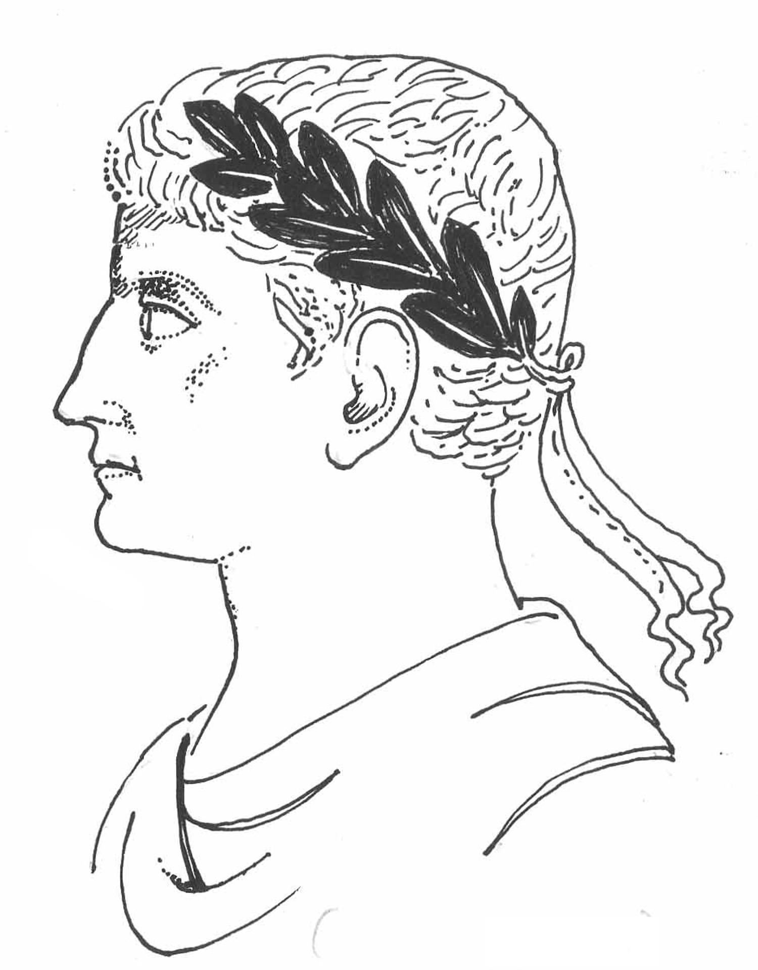 outline for julius caesar Gaius julius caesar (/  roman satirists ever after referred to the year as the consulship of julius and caesar when caesar was first elected,.