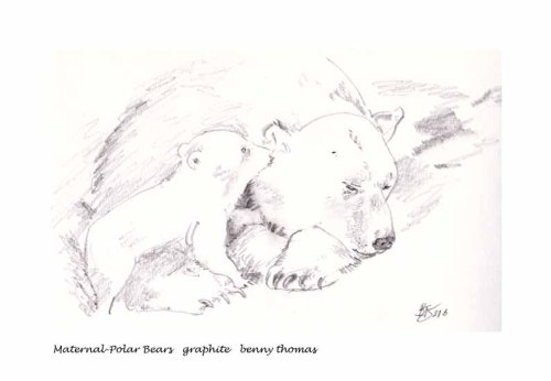Maternal-Polar Bears