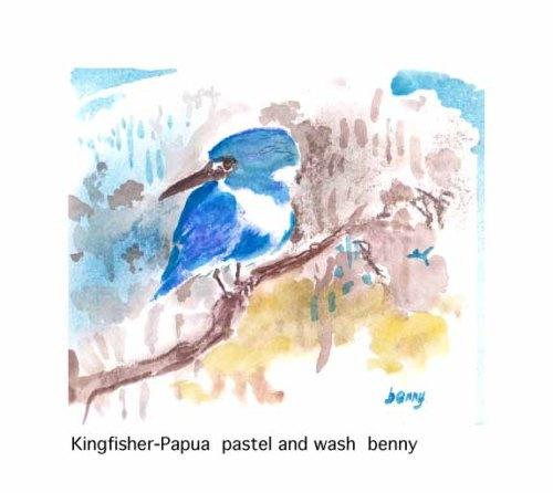 Kingfisher-Papua