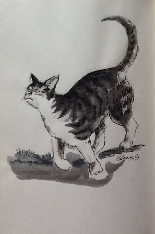Curious Cat-pen and wash