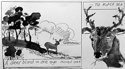 AESOP FABLES UPDATED- taken by the blind side