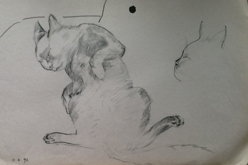 From my Sketch book-a sleeping cat
