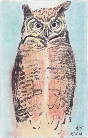 Owl-agter Beth van Hoesen