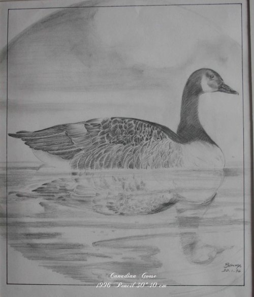 CanadianGoose-graphite(repeat)