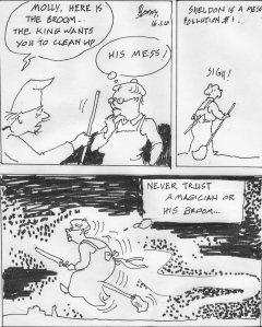 sheldonia-broom